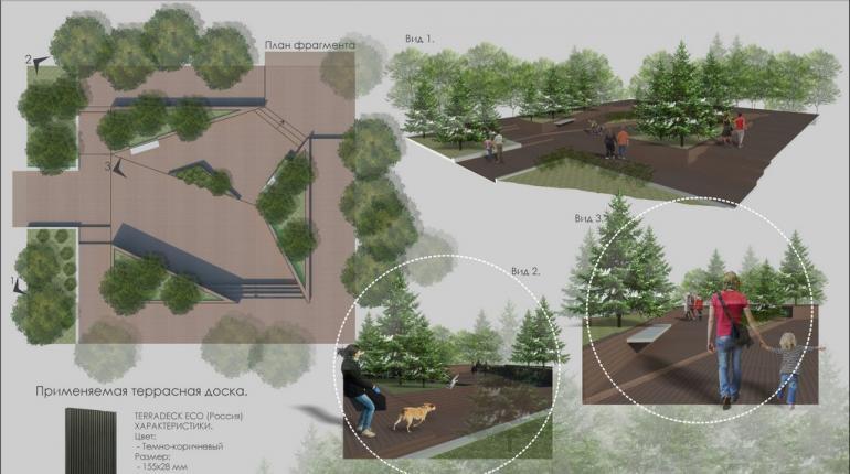 Фрагмент парковой зоны в Саратове